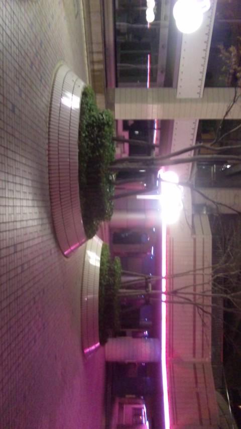 仙台street